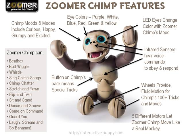 Zoomer Chimp Features