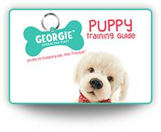 Georgie Puppy Training Guide