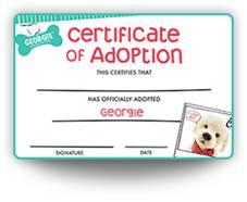 Georgie Robotic Dog Adoption Certificate
